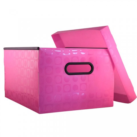 Caixa Organizadora Gr. Vision Rosa