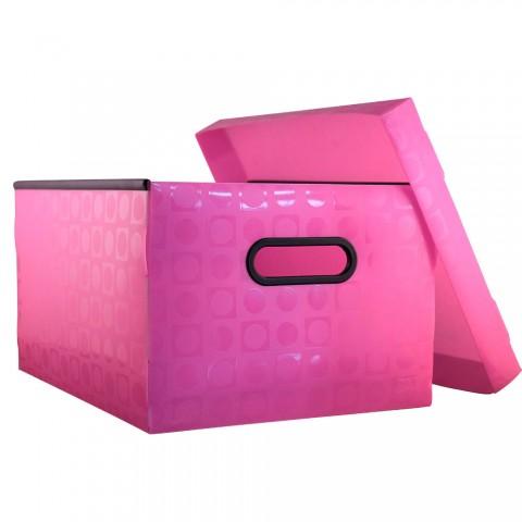 Caixa Organizadora Peq. Vision Rosa