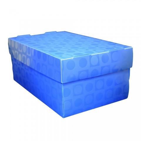 Caixa Organizadora PP Vision Azul